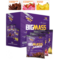 BIGJOY - BigJoy Sports BigMass Gainer 16 Servis 1600 gr